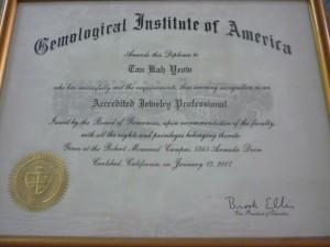 AJP Diploma